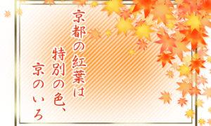 京都の紅葉は特別の色、京のいろ