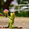 「Valentine's Day」情熱の赤いバラ・アメリカのバレンタインズデイ
